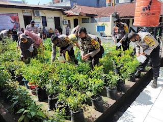 Dukung Ketahanan Pangan, Polsek Ujung Tanah Panen Perdana Cabai dan Tomat