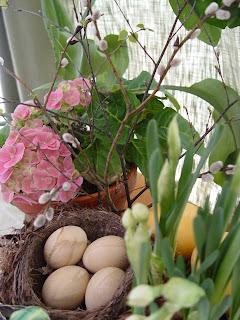 Kukkamessujen maaliskuun blogihaaste
