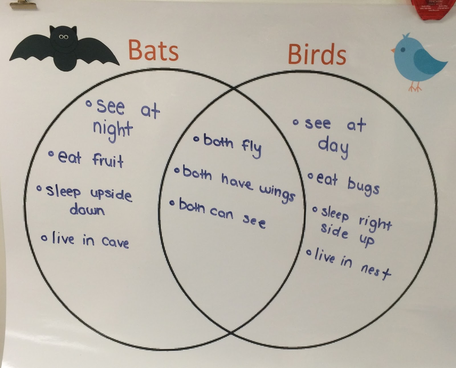 First Grade Love Compare And Contrast