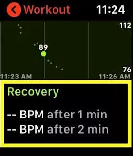Cara Memeriksa Pemulihan Detak Jantung di Apple Watch dan iPhone-3