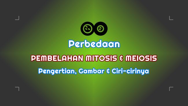 Perbedaan Pembelahan Mitosis dan Meiosis