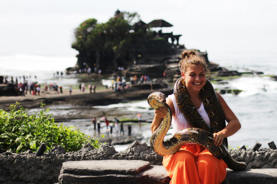 snake tana loth bali trabel safari