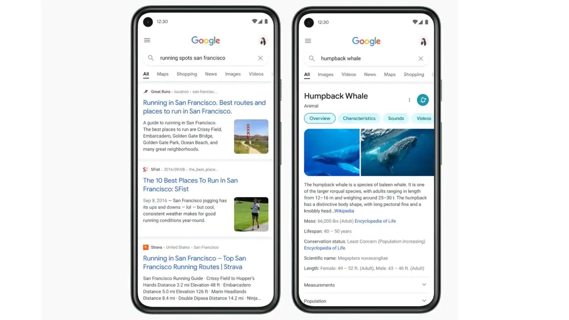 google-search-di-seluler-dirombak-total