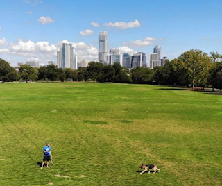 fun in austin zilker park