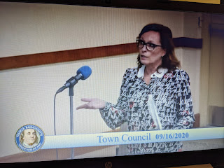 Town Council - Meeting Recap - Sep 16, 2020 - Health Dept Presentation