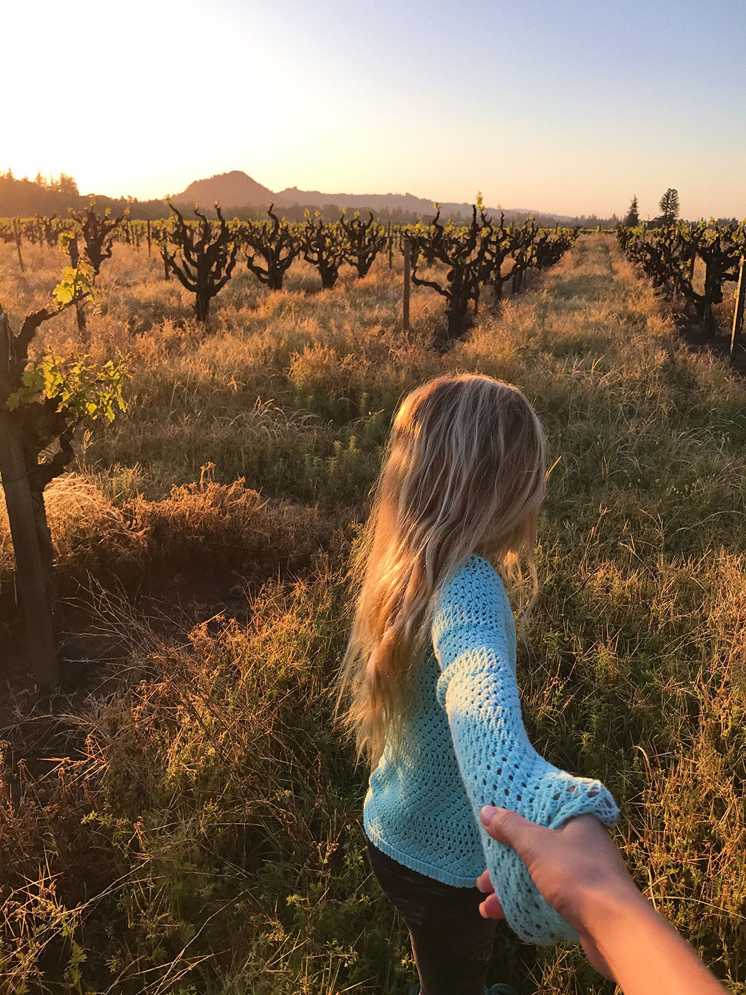 Visiting Sonoma Wine Country with the Family