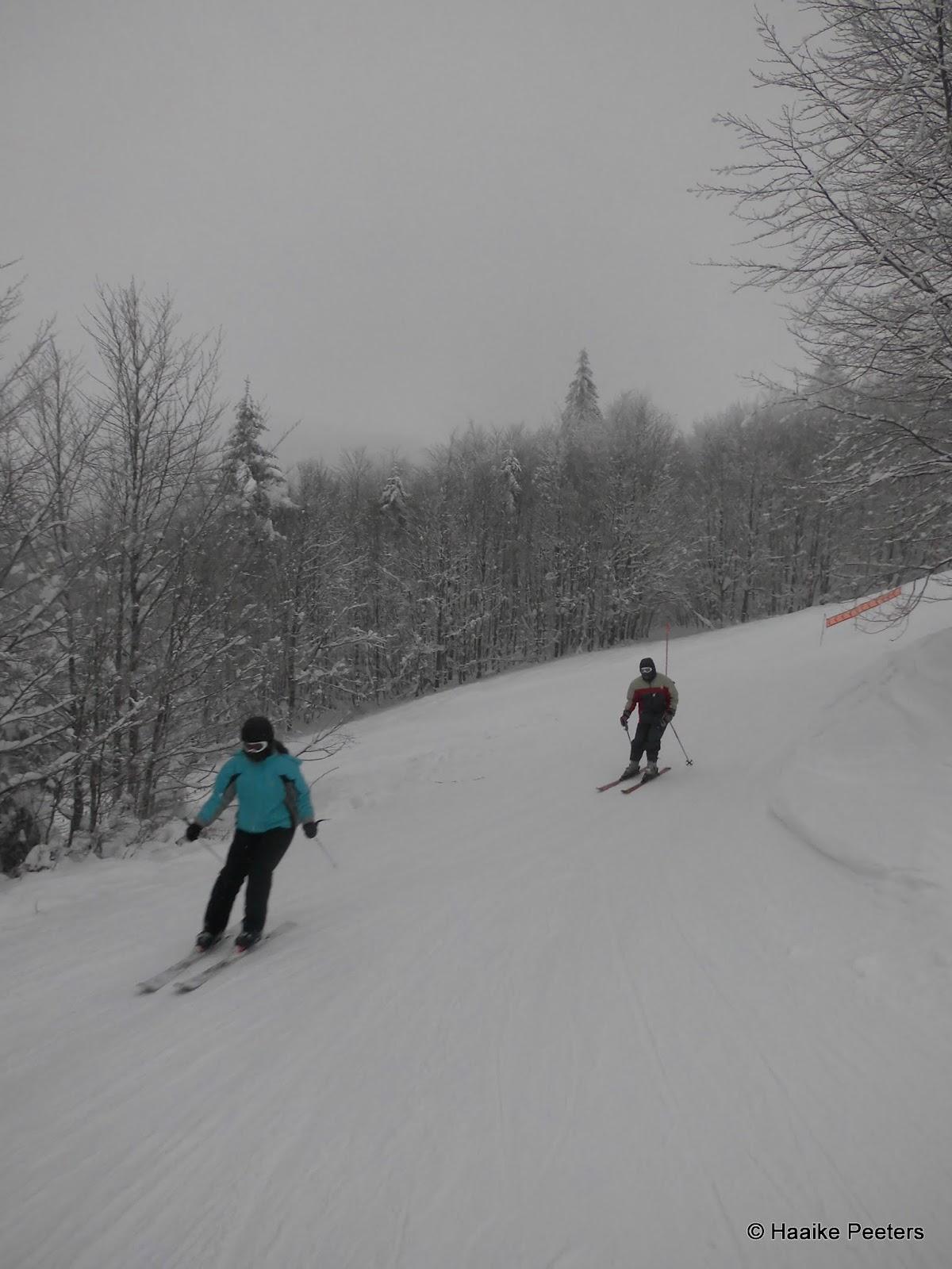 Skiën La Bresse (Le petit requin)