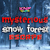 Knf Mysterious Snow Forest Escape