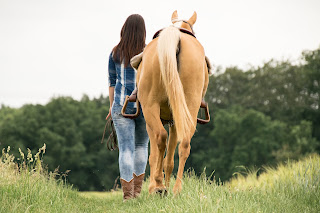 A Palomino horse being wearing tack being lead by his rider down a grass track.