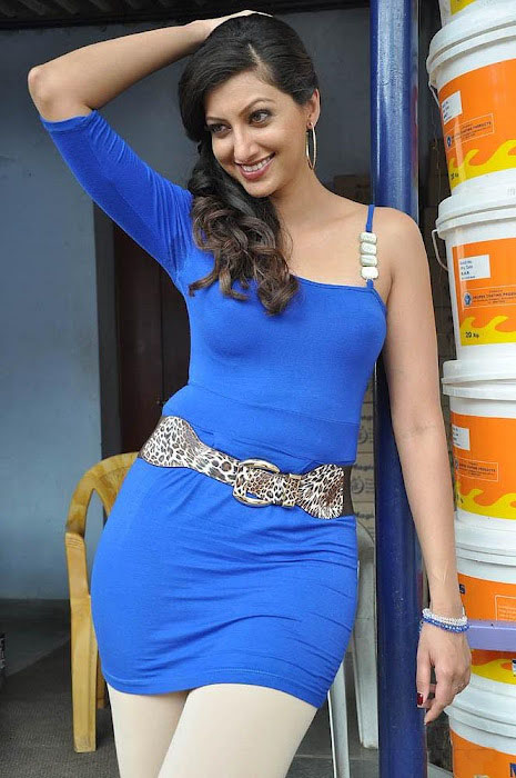 Glorious and superb hamsa nandini in blue latest images gallery