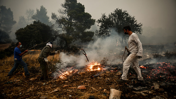 Πυρκαγιά στα Βίλλια: Απελπισία και αγανάκτηση για τη γύμνια του κρατικού μηχανισμού