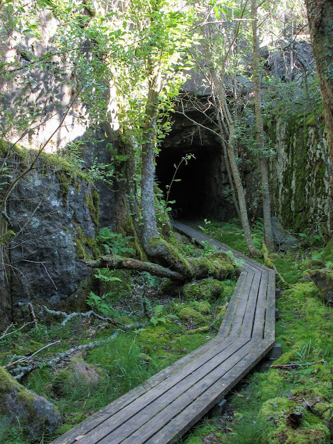 Suuren tunnelin aukko vehreän kasvillisuuden ympäröimänä. Tunneliin johtavat pitkospuut.
