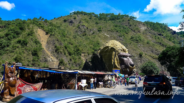 Lion's Head at Kennon Road