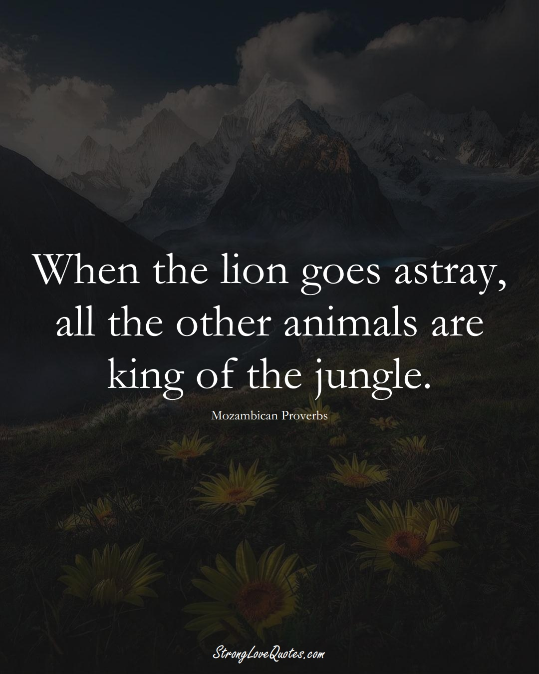 When the lion goes astray, all the other animals are king of the jungle. (Mozambican Sayings);  #AfricanSayings