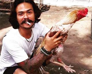 Yoyok Bikeboyz dan Ayamnya