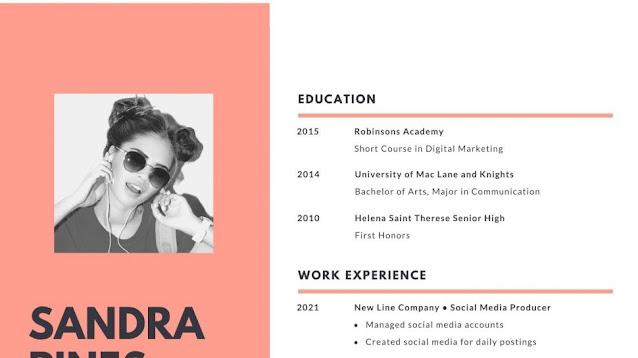 Website untuk Membuat CV Online agar Terlihat Kreatif dan Menarik
