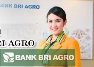 Lowongan Kerja Fresh Graduate/ Experience PT. Bank Rakyat Indonesia Agroniaga, Tbk Januari 2017