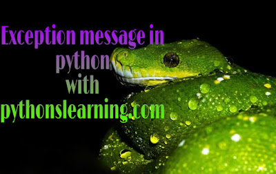 How to get exception message in python properly