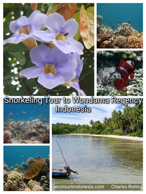 vacation tour to west papua province of Indonesia