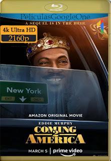 Un príncipe en Nueva York 2 (Coming 2 America) (2021) [4k WEB-DL-HDR] [Latino-Inglés] [LaPipiotaHD]