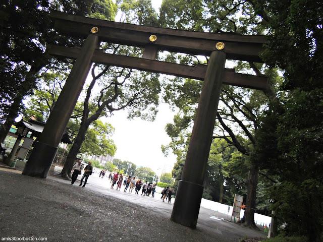Crisantemos Adornando el Torii del Santuario Meiji