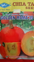perawatan mudah, golden mama, rasa manis, daging keras, kulit bernet, action, glamour