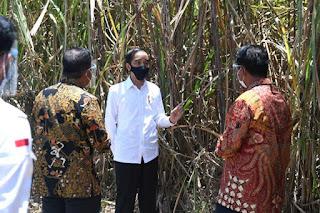6 Tahun Kepemimpinan Jokowi, Ekonomi Terpuruk Daya Beli Anjlok