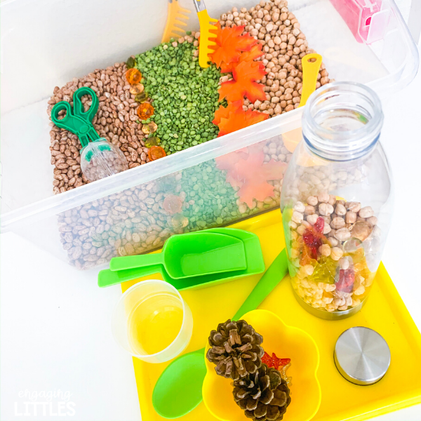 easy fall sensory bins