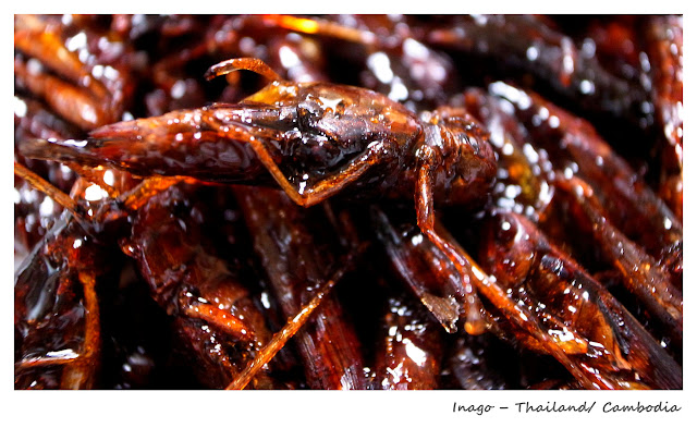 Top 10 Weirdest Food in Asia - Inago - Thailand Cambodia | Ramble and Wander