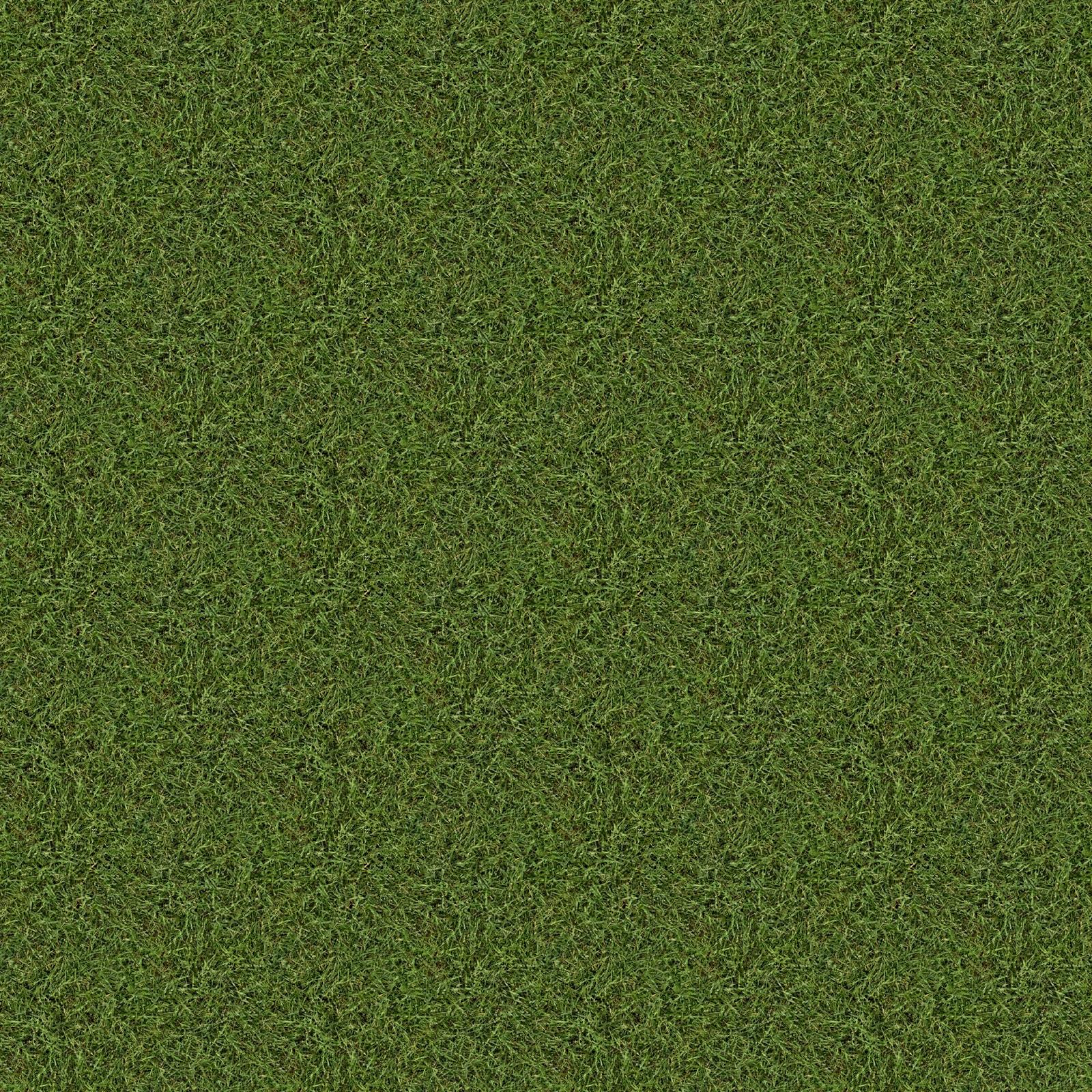 High Resolution Seamless Textures: Old Grass Texture Made