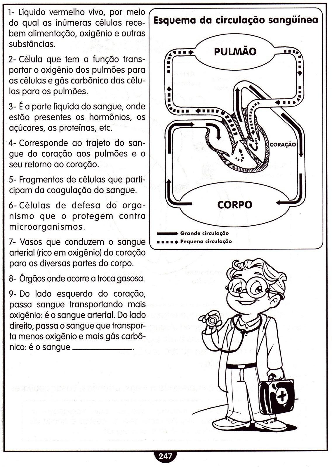 Famosos EDF Compartilha Professor: Corpo Humano - Atividades RQ51