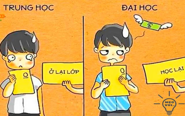 Sự khác biệt giữa đại học và trung học