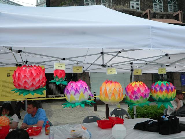 Colorful lotus lanterns hanging