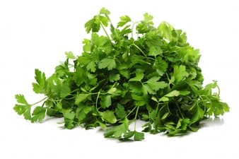 Therapeutic parsley-soaked benefits