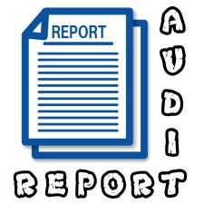 MKT520| Innovation audit report | Management 1