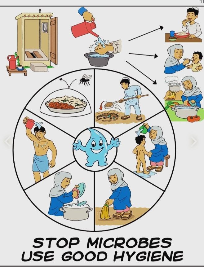 Hygiene | Personal hygiene | Food hygiene | kitchen hygiene