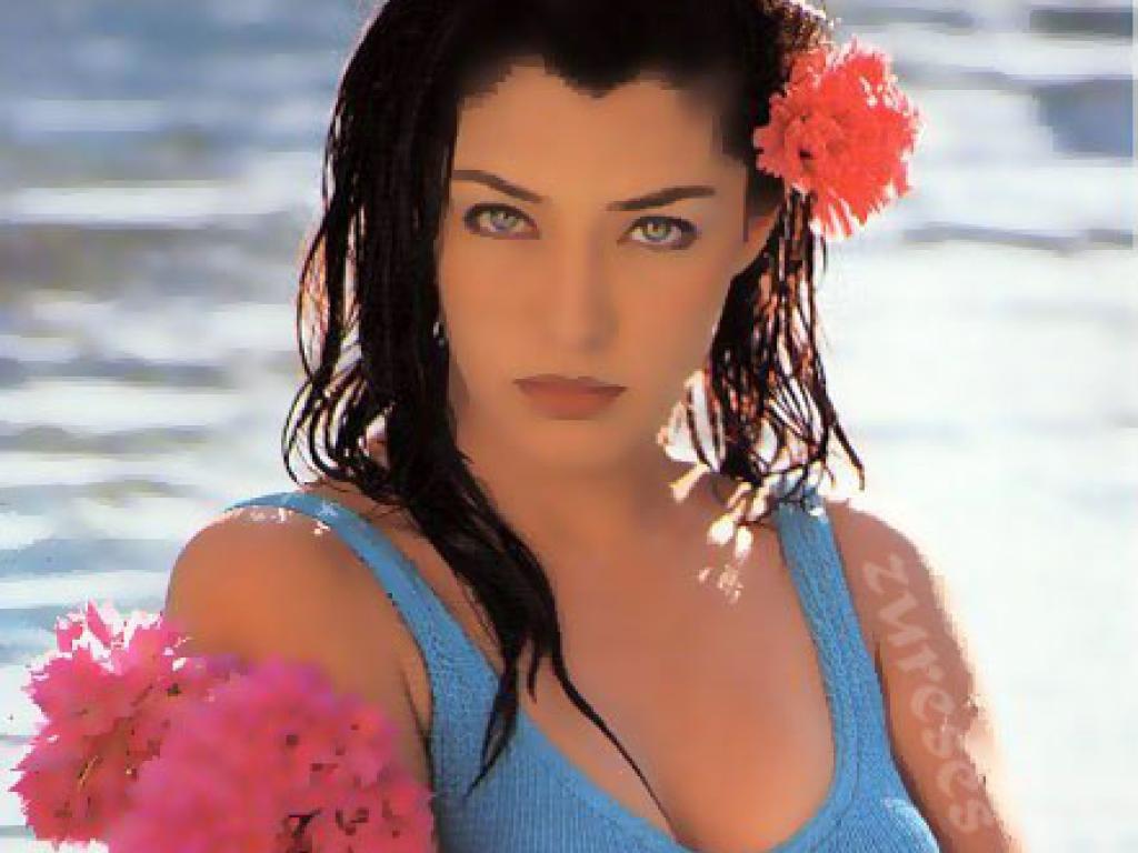 Indian Hot Actress Pictures Bollywood Hot Actress Aditi -6513