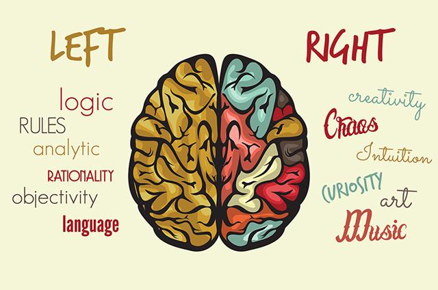 DESIGN AND CREATIVITY, Perbedaan Otak Kanan Kiri untuk bisnis dan kreatifitas