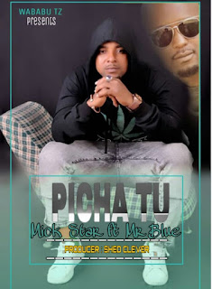 DOWNLOAD AUDIO | Mick Star Ft. Mr Blue – Picha Tu  mp3