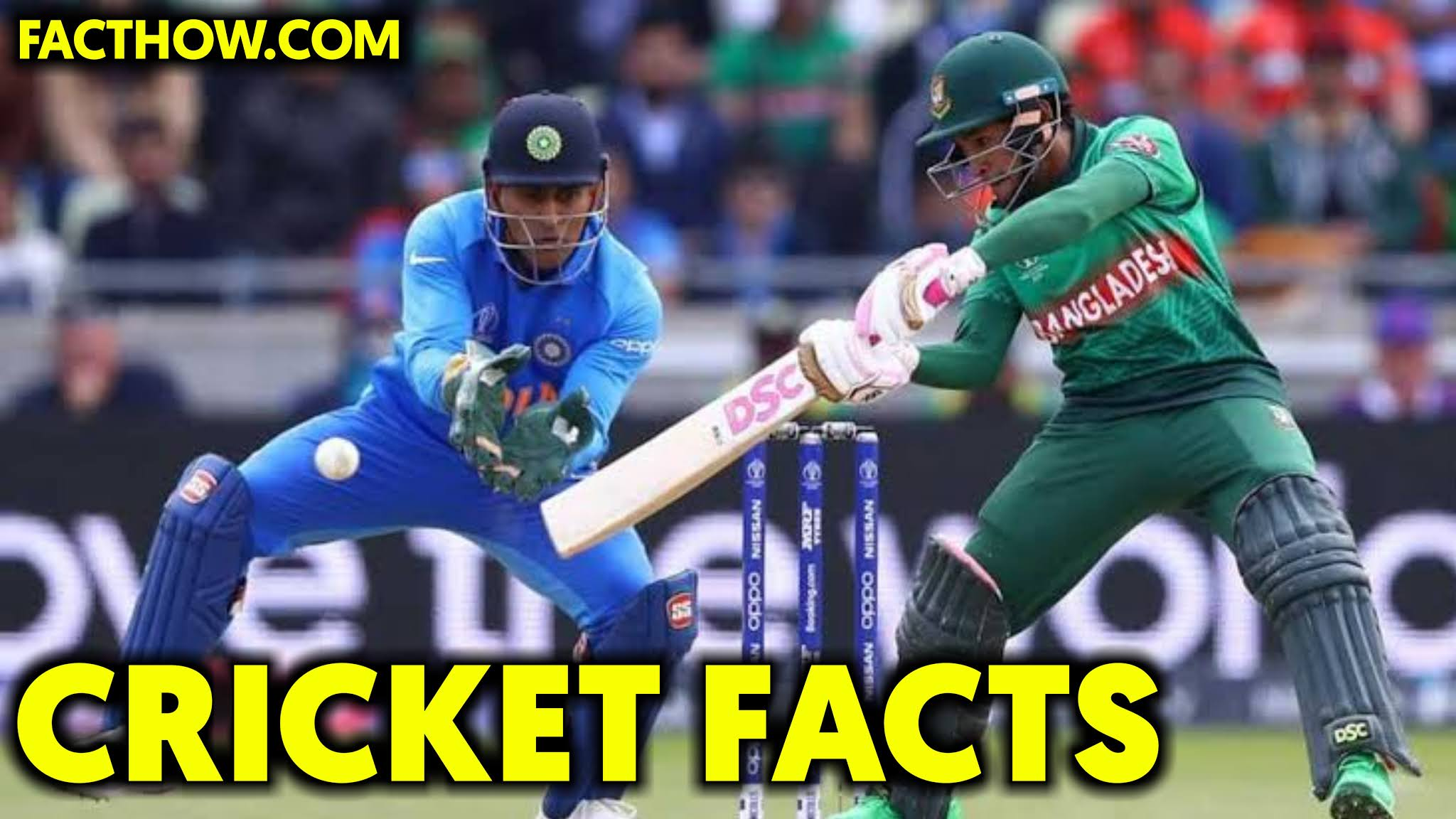 100 interesting facts about cricket