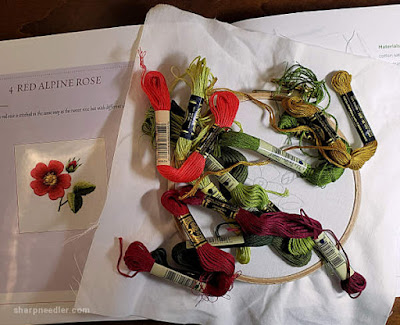 Beginning a Trish Burr needlepainting project: Red Alpine Rose