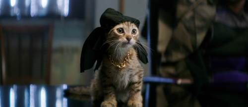 keanu-2016-new-movie-trailers-images