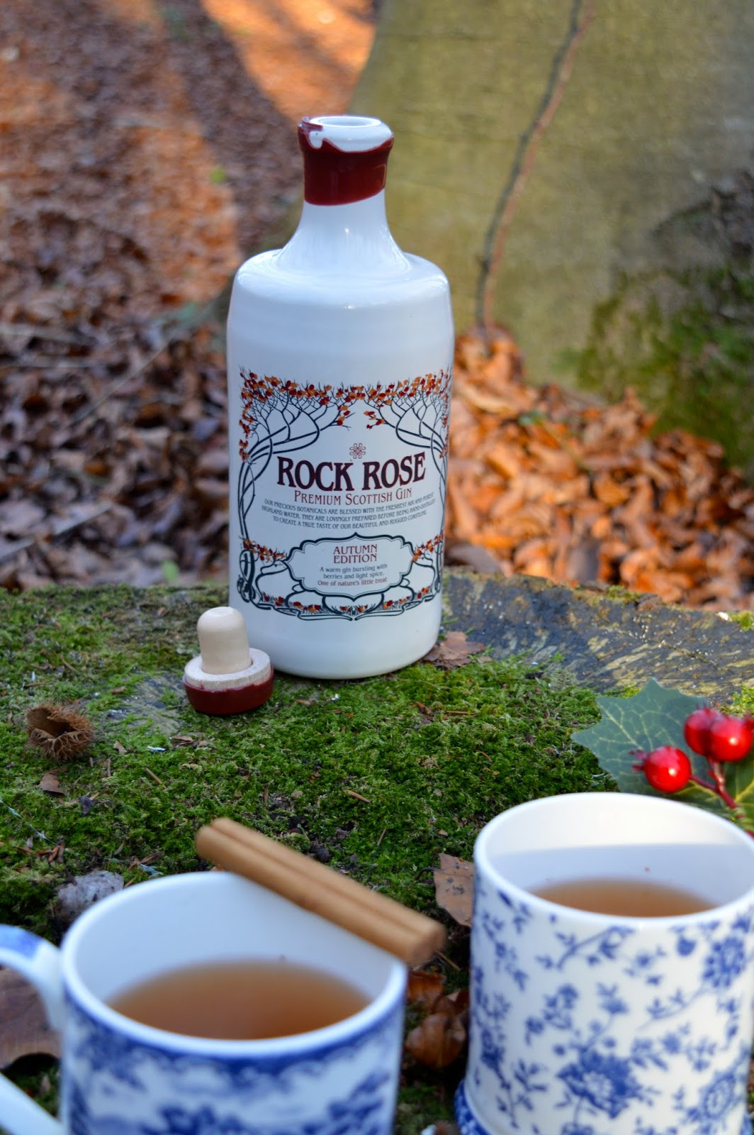 Hot Spiced Gin Cocktails recipe, Rock Rose Gin, Dalry Rose blog, UK lifestyle blog, Hampshire bloggers, food blog, festive cocktails, hot cocktails