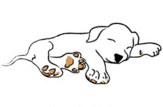 National Puppy's Day Clipart