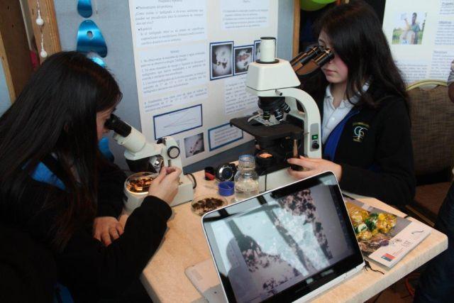Concurso Científico Escolar