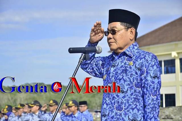 Wabup Mesuji Pimpin Upacara Harkitnas ke-110