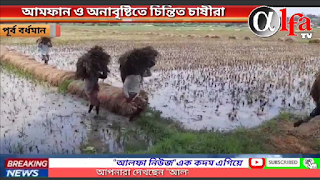 crops damaged by amfan and rain no sale at govt support price alfa news