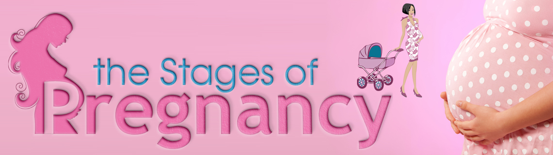 The Stages of Pregnancy: Twin Pregnancy Symptoms: First