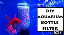 DIY Aquarium Filter Made of Bottle