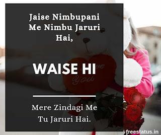Jaise-Nimbupani-Me-Nimbu-Jaruri-Hai - Love-Shayari